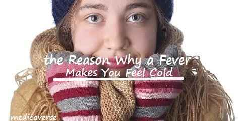 the reason why a fever makes you feel cold